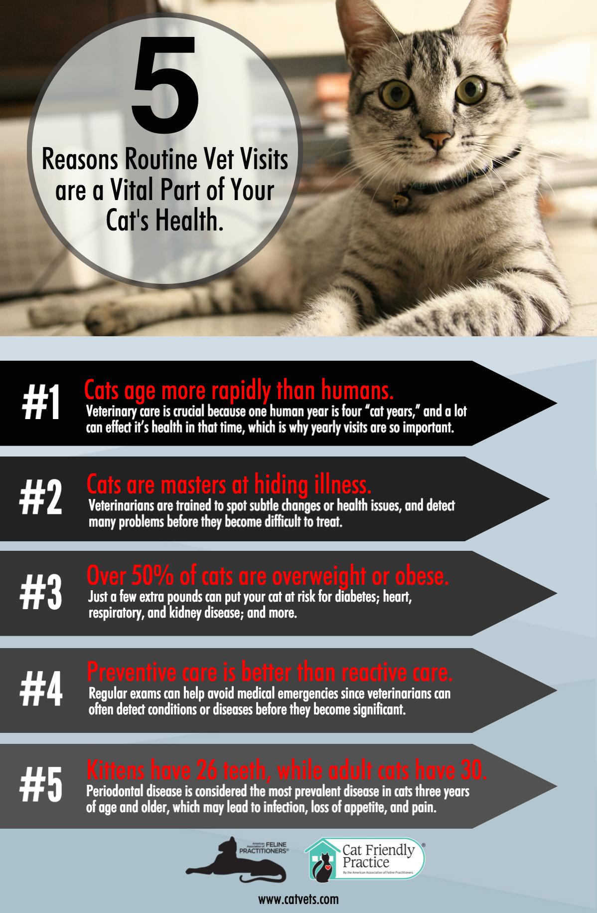 5-Benefits-Routine-Visits